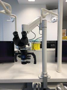 Flexion Tischmikroskop